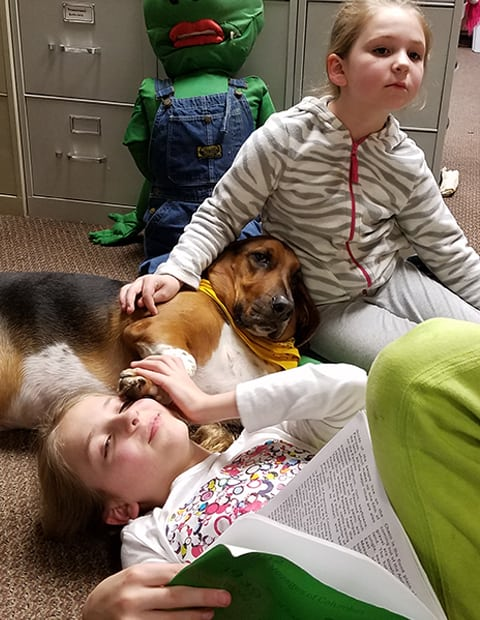 basset with children