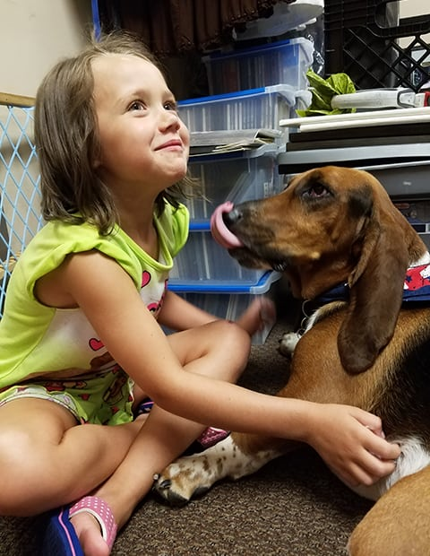basset with child