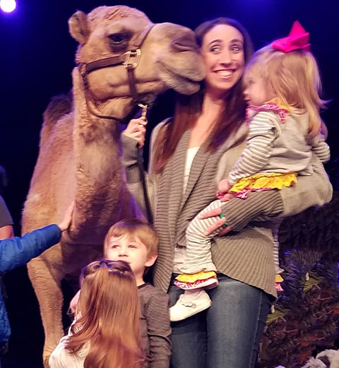 camel petting zoo